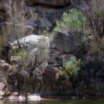 Riverbank Rocks and Tamarisk