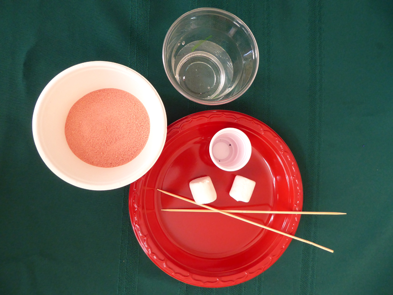 View looking down of supply kit: pink powder (gelatin) in a white up, water in a clear plastic cup, a round red plate, two wooden skewers, two marshmallows, four small candies in a small container.